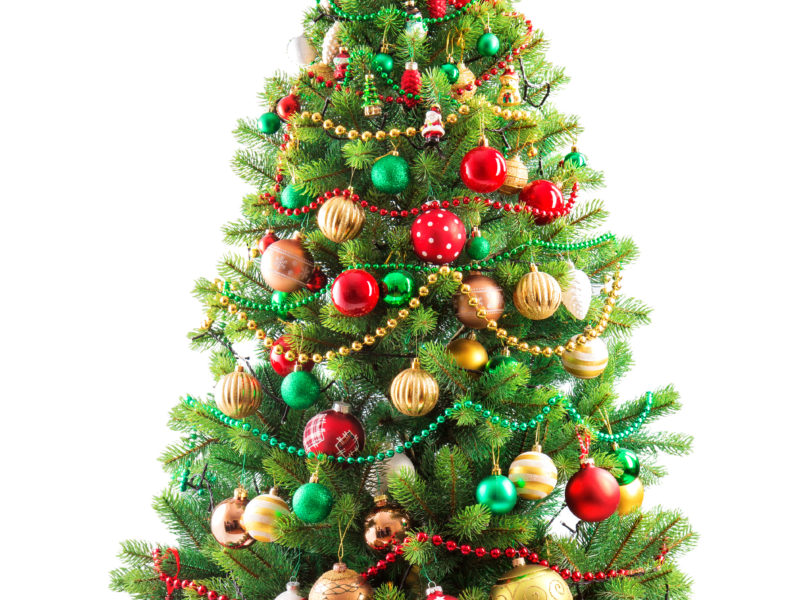 Beautiful christmas tree isolated on white background